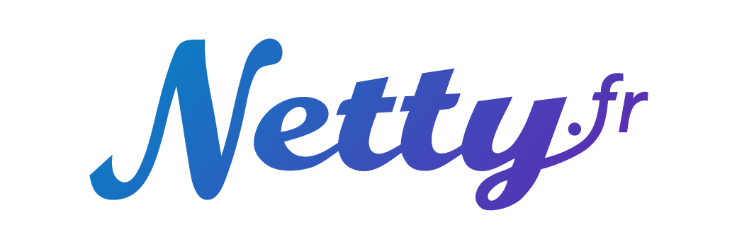 Logo Netty