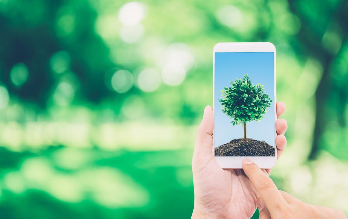 Digital Numerique Ecologie