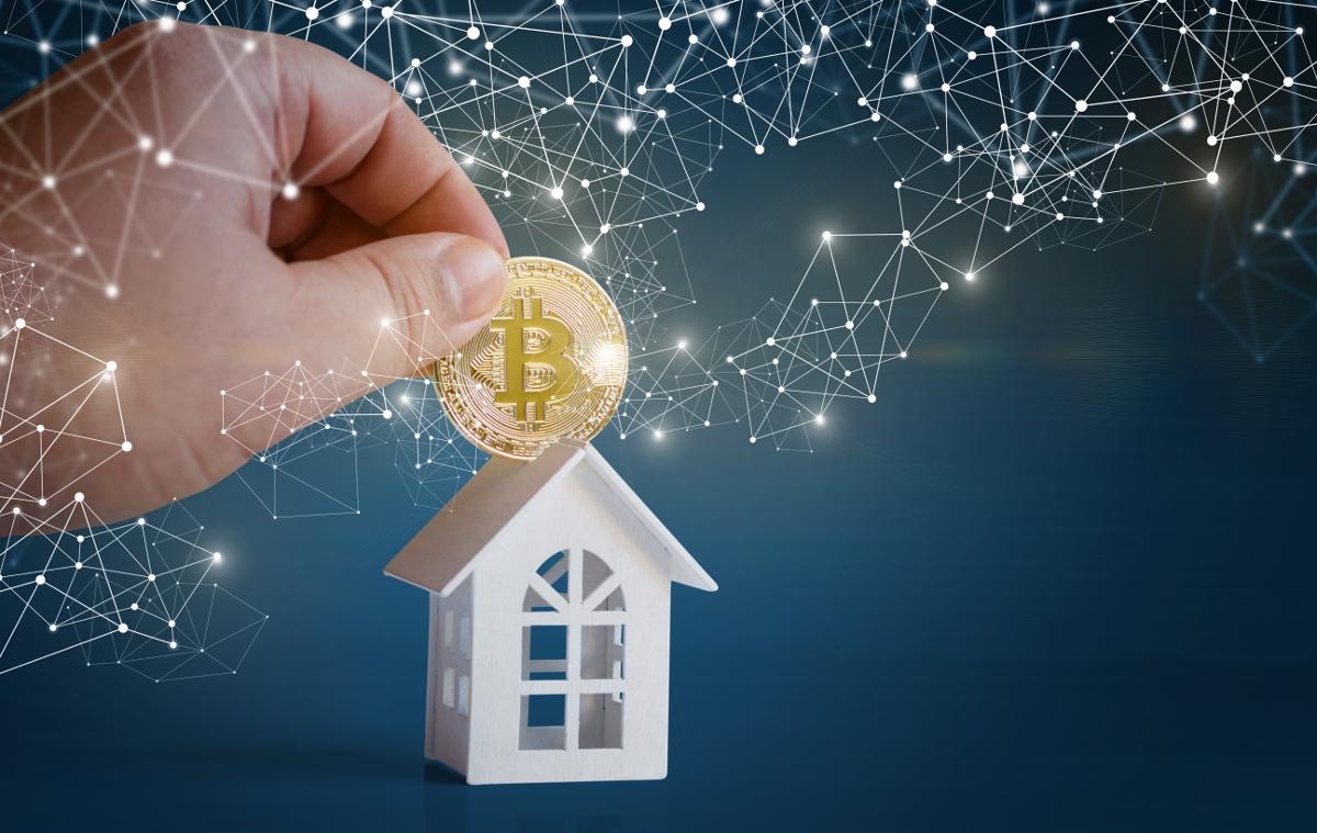 Blockchains Bitcoins Immobilier Olarchy Intervention